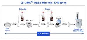 MIDI fame_procedure