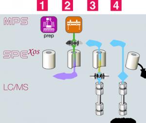 SPExos_schema_en